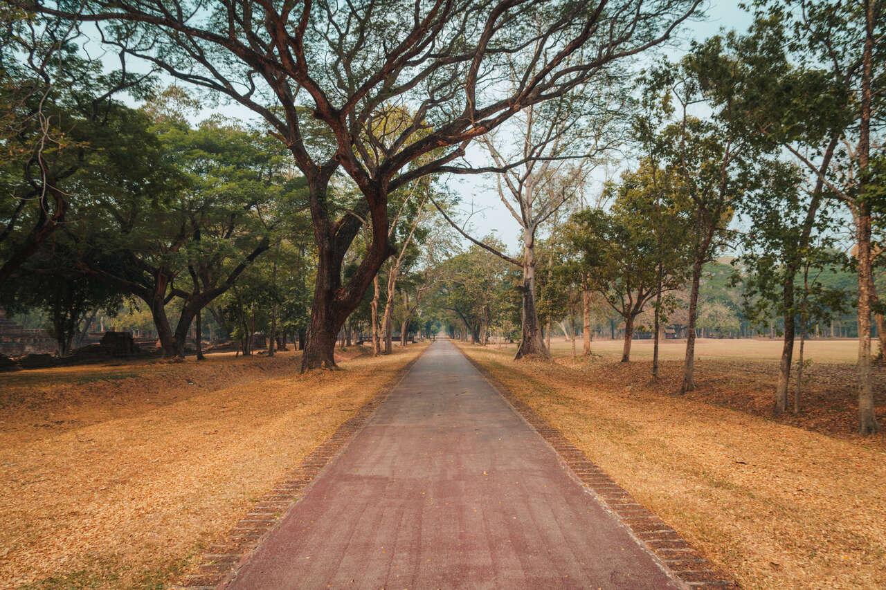 The bike path inside Si Satchanalai, Thailand.